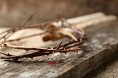 pic of crown-of-thorns  - Crown of thorns with blood - JPG