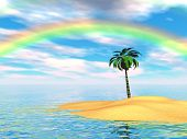 Palm Rainbow Island
