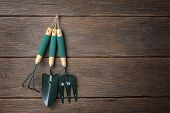 stock photo of household farm  - closeup gardening tools hanging on the wall - JPG