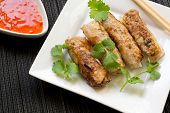 image of nem  - Homemade spring rolls with chili sauce and fresh coriander  - JPG