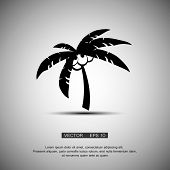 Coconut palm tree black silhouette isolated on light background. Abstract design logo. Logotype art poster