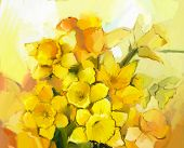pic of daffodils  - Still life of yellow and orange color flowers - JPG