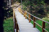 stock photo of wooden fence  - wooden bridge fenced by a wooden fence in a pine forest - JPG