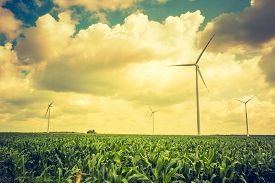 stock photo of windmills  - Vintage photo of windmills standing on corn field. Beautiful rural landscape with windmills.