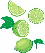 lime mix