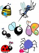 pic of spinner  - insects set - JPG
