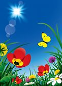 Vertical vector background with wild flowers and sun in the blue sky