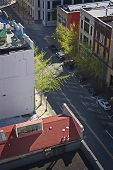 Urban Street from Above