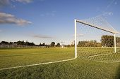 Green football pitch goal post and net