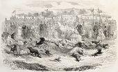 Dog race in Louisbourg, Wurttemberg. Created by Janet-Lange after Braien, published on L'Illustration, Journal Universel, Paris, 1858