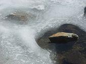 Ice Around Rock