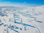 Aerial View Of White Winter Forest With Snow Covered Trees And Rural Road In Finland poster
