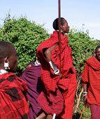 Maasai warriors performing the Lion Dance.
