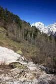 pic of firn  - The mountains in the spring and summer General condition of spring and summer in the mountains