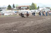 Nicola Valley Rodeo