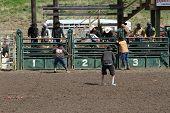 Nicola Valley Rodeo