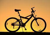 Golden Sky Bike