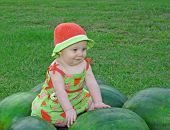 In The Watermelon Patch
