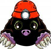 Cute liitle cartoon mole