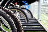 Schoolyard Bike Rack