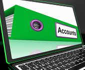 Accounts File On Laptop Shows Accounting