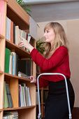 Librarian Rearranges Books