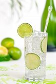 Gin Tonic &