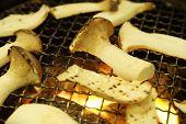 Eringii Mushroom On A Grill