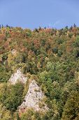 stock photo of pieniny  - Colorful mountais - JPG