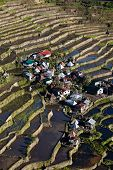 stock photo of luzon  - Rice terraces in Batad northern Luzon Infugao province Philippines.