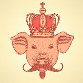 Sketch Pig In Crown With Mustache, Vector  Background