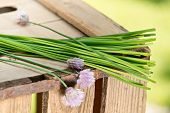 Chives On The Wooden Table
