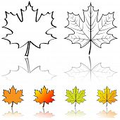 Black and white shapes of maple leaf with four color samples isolated on white background.