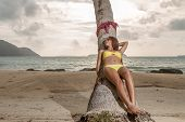 Thai girl on the beach leaning on a coconut tree