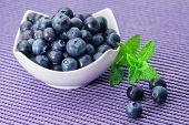 Blueberries in a bowl on  violet background