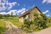 Vineyards And Mud Made Cottage