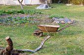 Preparation For Spring Work, Wheelbarrow In Yard