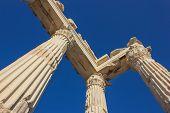 Trojan Temple Columns