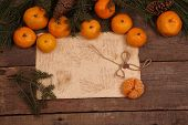 stock photo of tangerine-tree  - Still - JPG