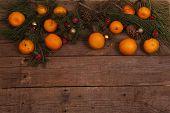 foto of tangerine-tree  - Still - JPG