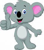 Cute koala giving thumb up