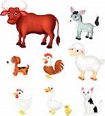 Farm animal collection set
