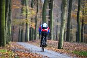 Man On Bicycle In Autumn Forest