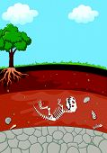 picture of dinosaur skeleton  - illustration of Soil Layers with dinosaur fossil - JPG