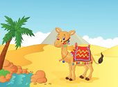 Cartoon decorated camel vector