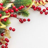 Christmas Pine and Berries on paper