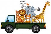 Illustration of many animals on the truck