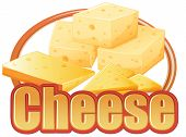 Cheese in different sizes on a white background