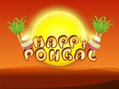 South Indian harvesting festival celebrations poster or banner design with traditional mud pot, sugarcane and stylish text Happy Pongal in morning view.