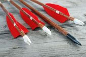 stock photo of archery  - Wooden archery arrows with plastic nocks  - JPG